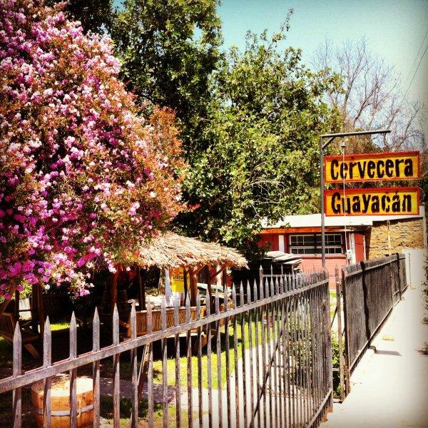 Galeria - Cerveza Guayacán