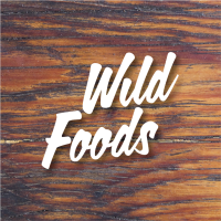Logo Wild Foods