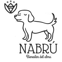 Logo Nabrú