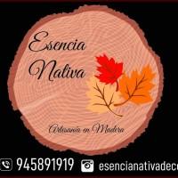 Logo Esencia Nativa