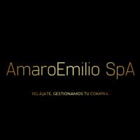 Logo AmaroEmilio SpA