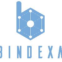 Logo Bindexa